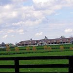 Horse Farms in Kentucky