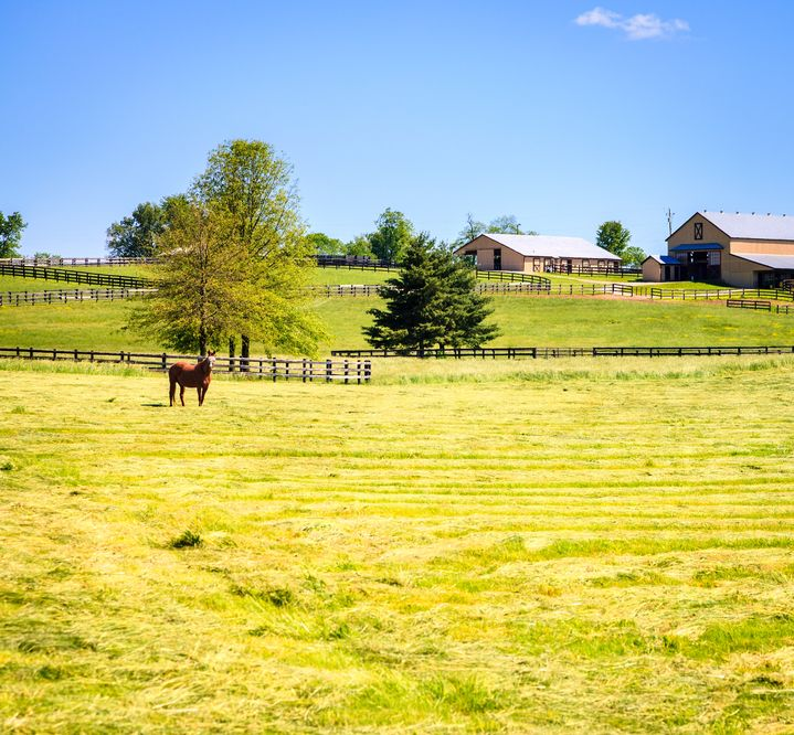 horse farms lexington properties